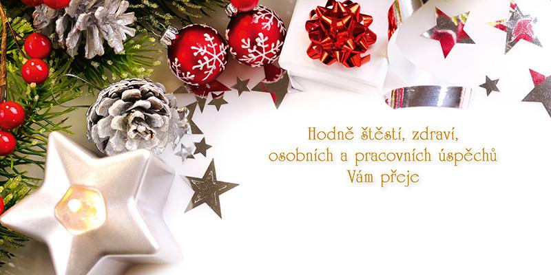 Novoročenky jednolisté - H583 / dekorace s lucernou