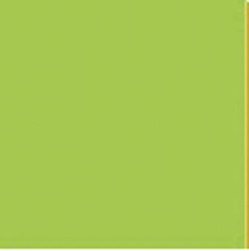 Barevný karton - A4 / 160 g / jarní zelená
