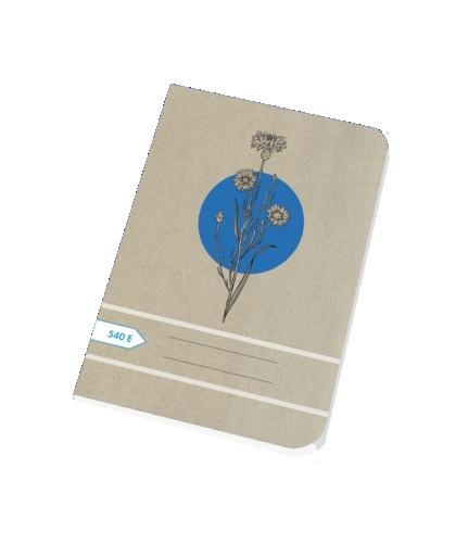 Papírny Brno sešit školní ECONOMY 40 listů A5 čistý 540