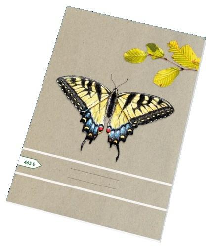 Papírny Brno sešit školní ECONOMY 60 listů A4 čtvereček 465