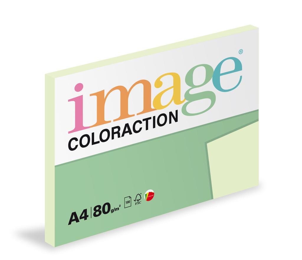 Xerografický papír BAREVNÝ - Jungle / pastelově světle zelená / 100 listů / GN27